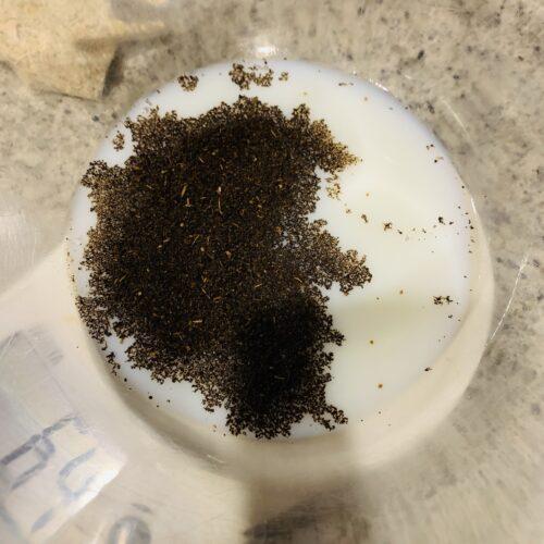 ① ボウルに豆乳、紅茶の茶葉を入れて、レンジ600Wで1分加熱する。取り出したら混ぜて冷ましておく。